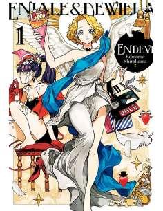 ENDEVI 01